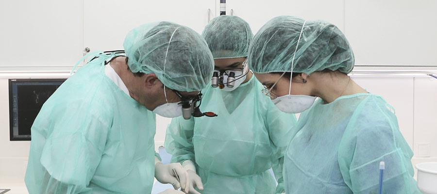 Operación quirúrgica Estoclinic